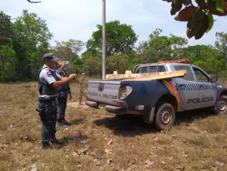 A madeira extraída ilegalmente foi apreendida e encaminhada a PJC (Crédito: Agência da Notícia)