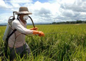 Nesta semana a capacitação com Agrotóxicos acontecerá em quatro municípios (Crédito: Reprodução)