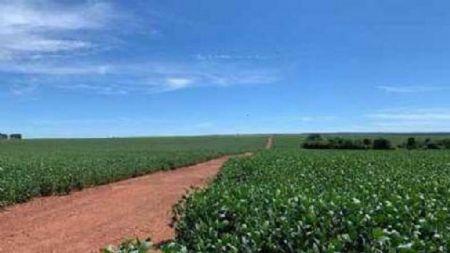 Fazenda fica localizada no município de Santo Antônio do Leverger, distante 27 km de Cuiabá e possui área de 3300,0337 hectares (Crédito: Agência da Notícia com Reprodução)