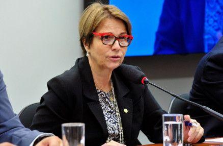 A ministra do Meio Ambiente, Tereza Cristina: governador não tomou medida porque quis (Crédito: Câmara dos Deputados)