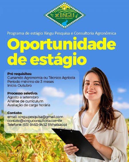 (Crédito: Xingu Pesquisa e Consultoria Agronômica)