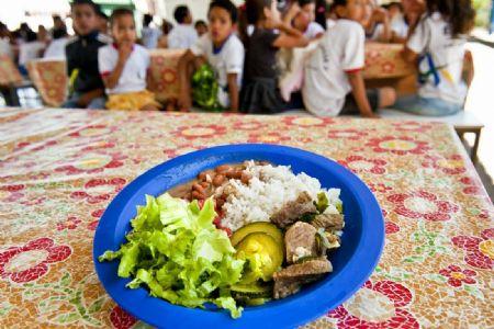 Na reunião, os produtores terão a oportunidade de fornecerem seus alimentos para serem utilizados nas merendas escolares, por um valor a ser estipulado durante o encontro. (Crédito: Agência da Notícia com Reprodução)